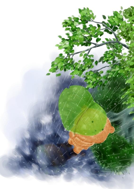 rain-800.jpg