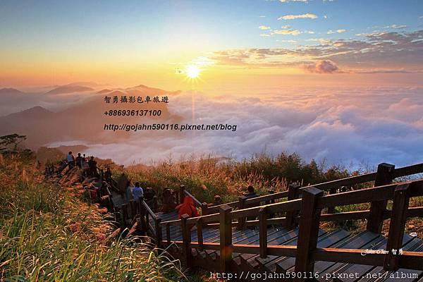 阿里山隙頂(包車旅遊).jpg