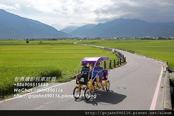 20150605智勇攝影包車旅遊花東縱谷0014.JPG