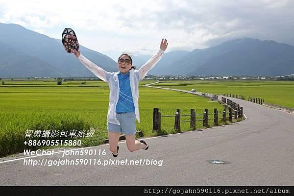 20150605智勇攝影包車旅遊花東縱谷0015.JPG