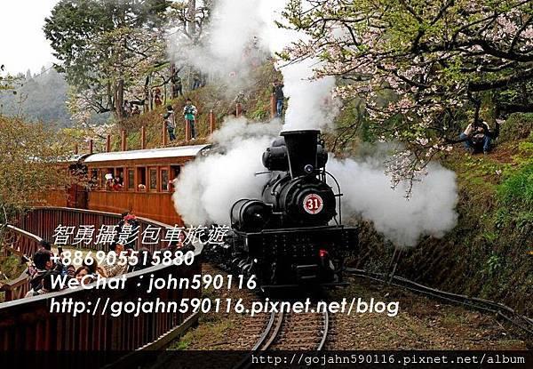 智勇攝影包車旅遊阿里山小火車(包車旅遊) (2).JPG