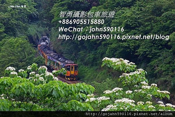智勇攝影包車旅遊1421396382191.JPG