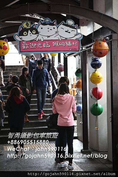 20151205智勇攝影包車旅遊710A5962.JPG