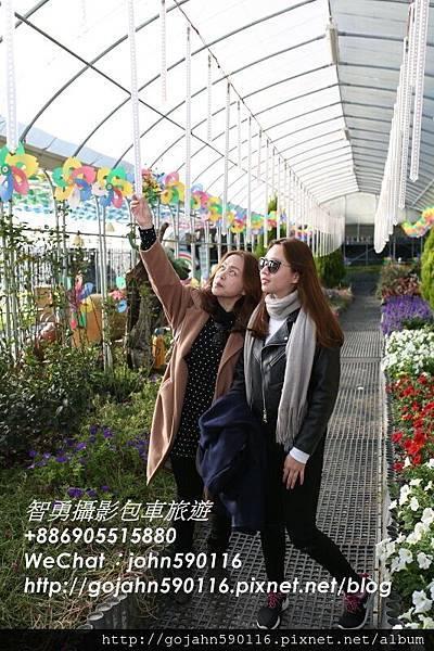 20151218智勇攝影包車旅遊710A6954.JPG