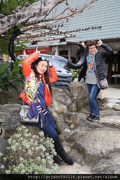 智勇攝影包車旅遊126牛之呼庭3.JPG