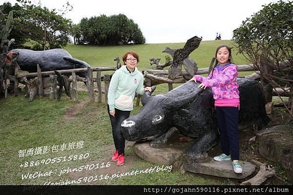智勇攝影包車旅遊126牛之呼庭6.JPG