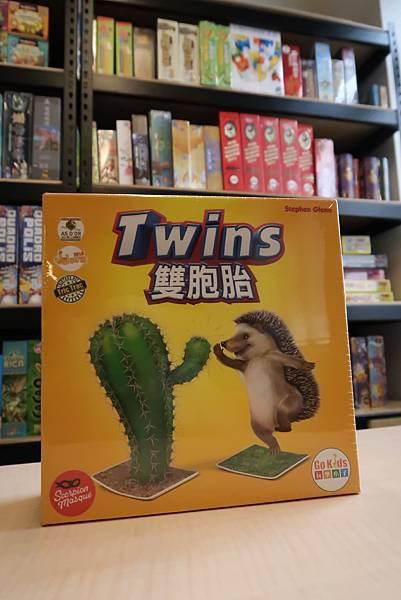 雙胞胎-盒子.JPG