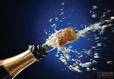 01-champagne-cork-140701(1).jpg