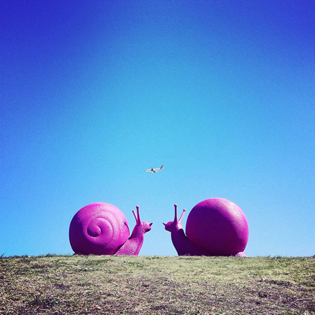 24-giant-fluorescent-snails-scattered-around-sydney-64148