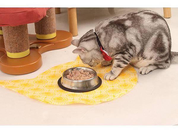 海登寵物用品貓墊飼料餐巾018.jpg