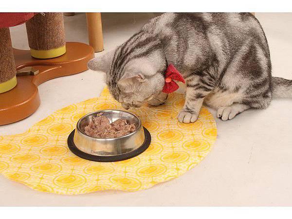 海登寵物用品貓墊飼料餐巾019.jpg