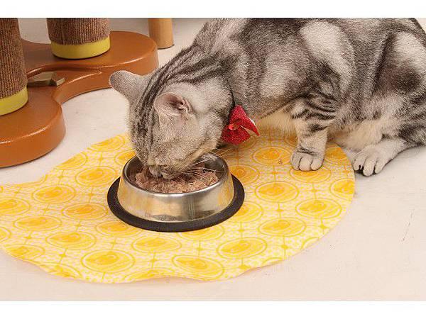 海登寵物用品貓墊飼料餐巾020.jpg