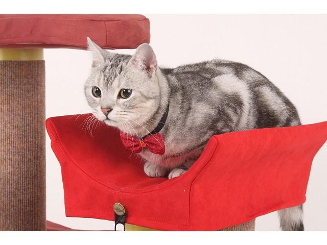 海登寵物用品貓咪與貓居貓跳台002.jpg