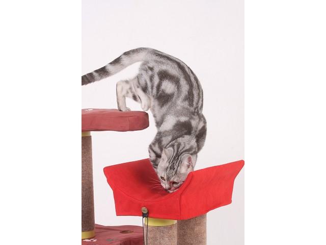 海登寵物用品貓咪與貓居貓跳台006.jpg