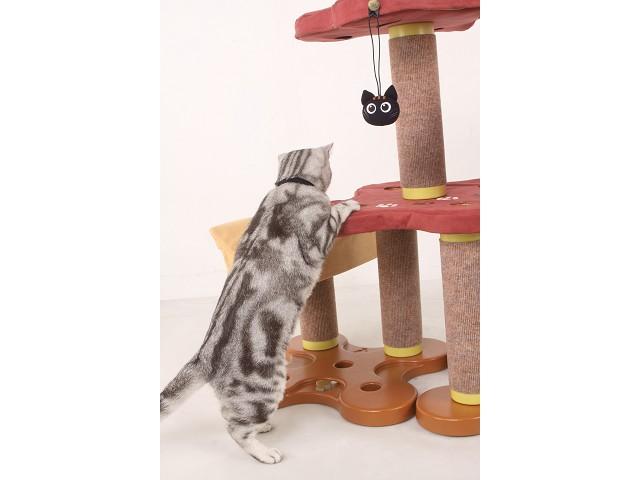 海登寵物用品貓咪與貓居貓跳台024.jpg