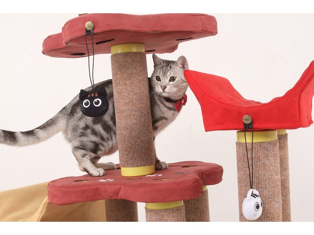 海登寵物用品貓咪與貓居貓跳台026.jpg