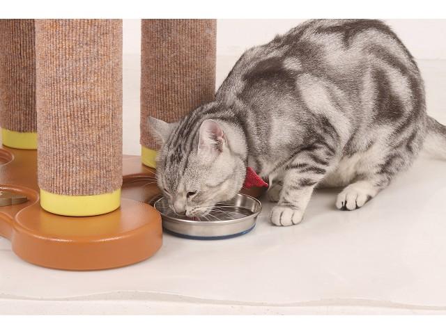 海登寵物用品貓咪與貓居貓跳台040.jpg