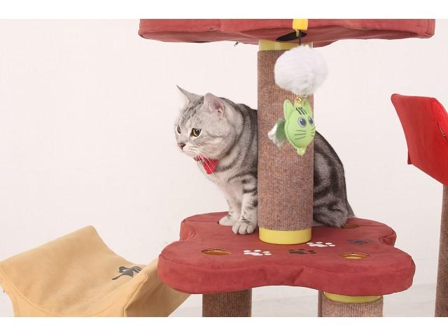 海登寵物用品貓咪與貓居貓跳台051.jpg