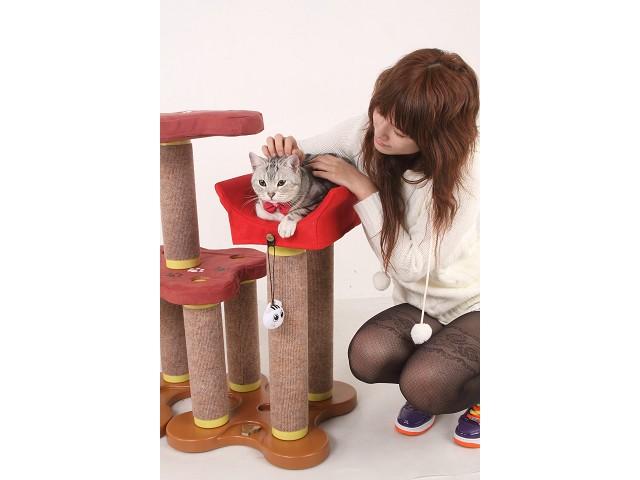 海登寵物用品月與貓咪貓居貓跳台001.jpg