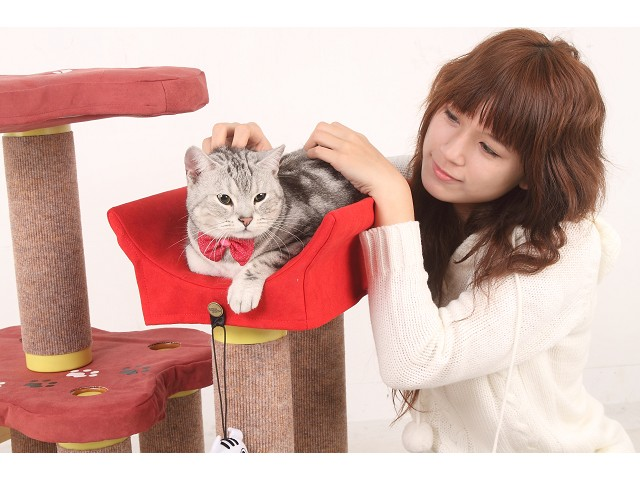 海登寵物用品月與貓咪貓居貓跳台002.jpg