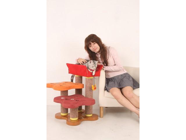 海登寵物用品月與貓咪貓居貓跳台011.jpg