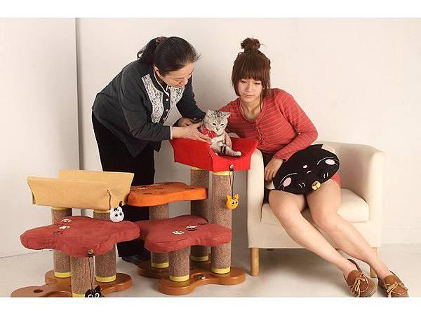 海登寵物用品月與貓咪貓居貓跳台021.jpg