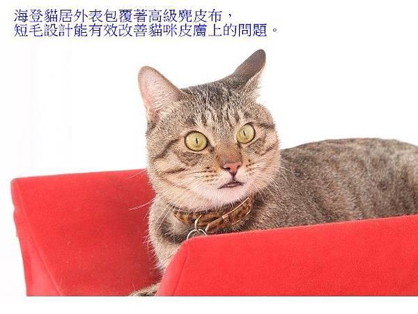 海登寵物用品貓與貓居貓跳台023.jpg