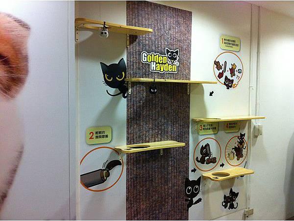 海登寵物用品catplus004.jpg