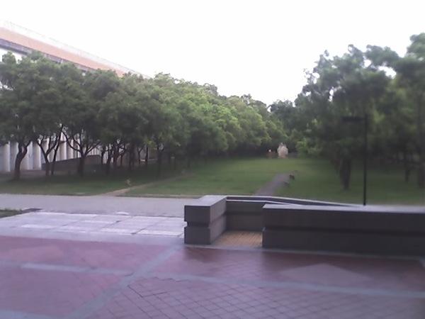 東海校園一景