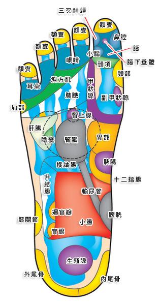 腳3.jpg