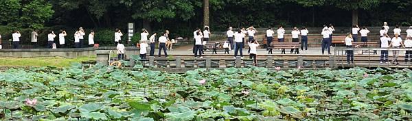 6.21.13 植物園 054(4X6).jpg