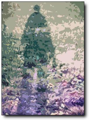 12.15 shadow copy.jpg