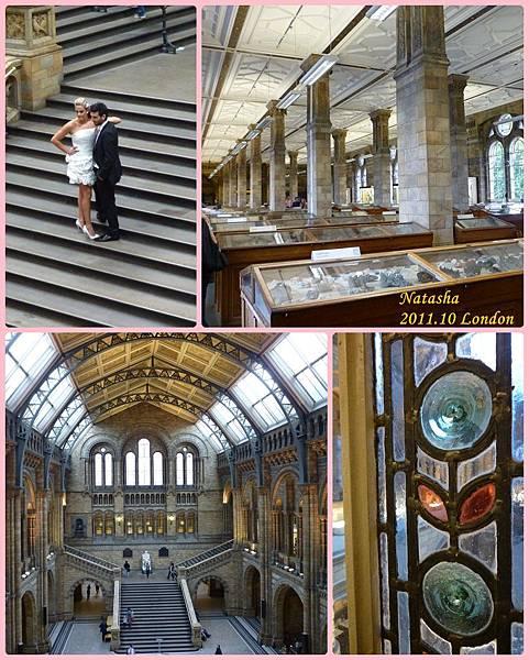 1004 自然博物館2.jpg