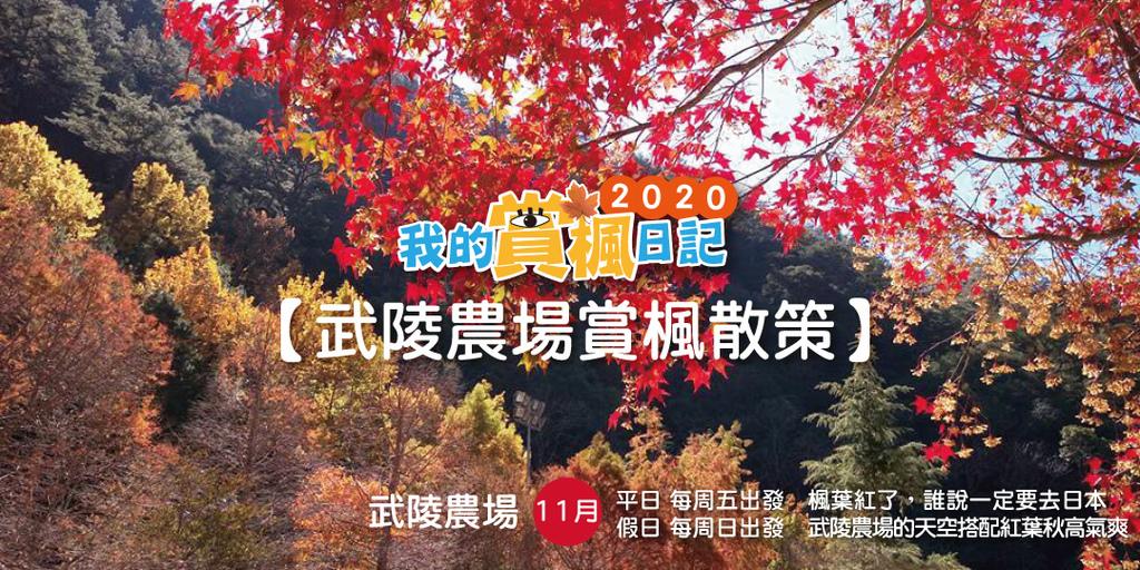 賞楓banner-2.jpg