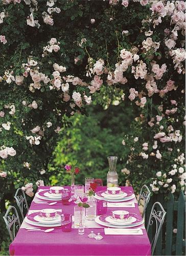 戶外野餐2