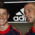 Fernando-Torres-Spain-1-vs-Portugal-0-fernando-torres-13447946-425-230.jpg