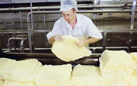 cheese_1632296c