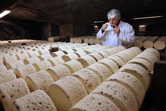 在洞穴中等待熟成的乳酪.jpg