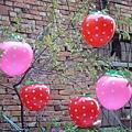 草莓球-24cm