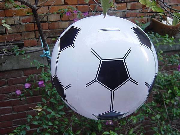 足球-28cm