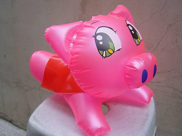 飛天豬側面圖