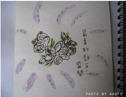 水彩時光四.jpg