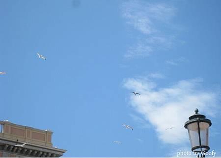 威尼斯二三.jpg
