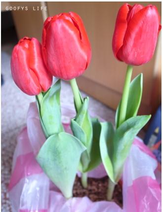 花攤十一.jpg