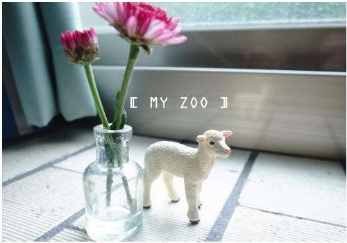 MYZOO2