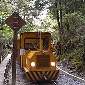 太平山2012 (5).jpg