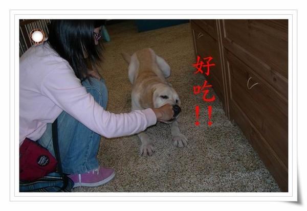 調整大小DSCN2008.JPG
