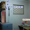 調整大小DSC_0036.JPG