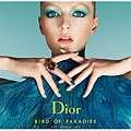 DIOR SUMMER 2013 MAKE UP BIRD