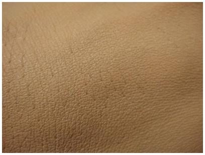 Dior 光柔恆色水潤精華粉底